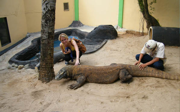 Reptile Park Places to visit in Bali