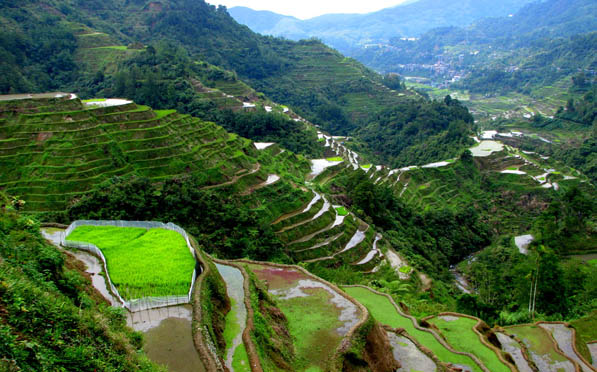 Top 10 Best Places to View Rice Terraces in Bali, tegalalang rice terrace ubud, best rice terraces in ubud, best time to visit bali rice terraces, jatiluwih rice terrace, tegalalang rice terrace restaurant, tegalalang rice terrace entrance fee, tegalalang rice terrace wikipedia, tegalalang rice terrace vs jatiluwih, best rice terraces in bali, tegallalang rice terraces in bali, famous rice terraces in bali, biggest rice terraces in bali, rice terraces bali ubud, rice terraces bali unesco, rice terraces bali wikipedia, rice terraces bali map, rice terraces bali tour, tegalalang rice terrace in ubud bali indonesia, tegalalang rice terrace bali map, tegalalang rice terraces bali, tegalalang rice terrace ubud bali, tegallalang rice terraces bali, tegalalang rice terrace bali map, tegalalang rice terrace ubud bali, tegalalang rice terrace in ubud bali indonesia, tegalalang rice terrace ubud bali, tegalalang rice terrace in ubud bali indonesia, tegalalang rice terrace bali map,things to do in bali,bali destinations guide map for couples families to visit,bali honeymoon destinations,bali tourist destinations,bali indonesia destinations,bali honeymoon packages 2016 resorts destination images review,bali honeymoon packages all inclusive from india,bali travel destinations,bali tourist destination information map,bali tourist attractions top 10 map kuta seminyak pictures,bali attractions map top 10 blog kuta for families prices ubud,bali ubud places to stay visit see