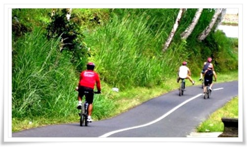 bali bike full day tour