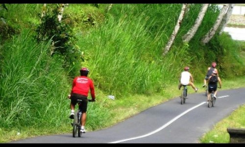 Half Day Bike Tour in Bali