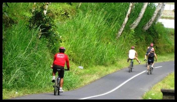 Half Day Bike Tour in Bali